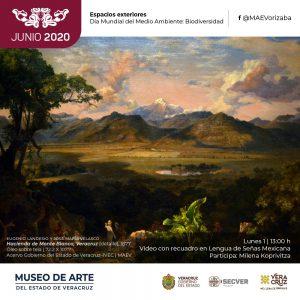 MUSEO DE ARTE DEL ESTADO DE VERACRUZ INVITA A CONOCER SU ACERVO A TRAVÉS DE LAS REDES SOCIALES.