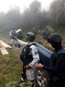 HA DEVASTADO LA TALA EN LOS ULTIMOS 10 AÑOS  12 MIL HECTÁREAS DE BOSQUES.