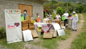 ENTREGA DIF DE IXTACZOQUITLÁN BENEFICIOS A PRODUCTORES APÍCOLAS DE CAMPO CHICO