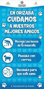 Inicia campaña «En Orizaba cuidamos a nuestros animales» «