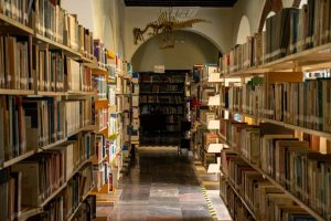 Bibliotecas públicas y quioscos digitales de Córdoba reanudarán actividades 24 de mayo.